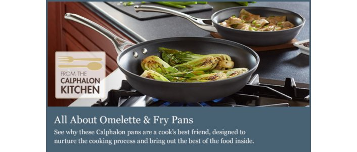 All About Omelette Pans